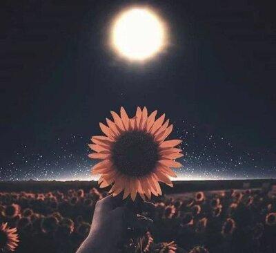 Star_moon1