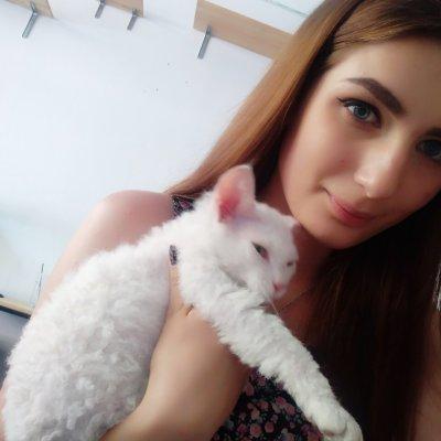 KittyKity